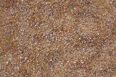 Textura da areia e dos seixos Fotos de Stock