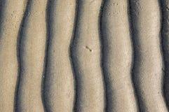 Textura da areia Fundo com a areia fina bege Linhas afiadas de ondas na areia Lixe a superfície na praia, vista de cima de Fotografia de Stock Royalty Free