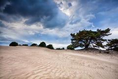 Textura da areia no clima de tempestade ventoso Fotografia de Stock Royalty Free
