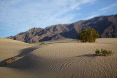 Textura da areia para o fundo Teste padrão da areia Foto de Stock Royalty Free