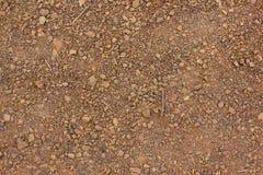 Textura da argila vermelha seca com close-up das pedras Foto de Stock