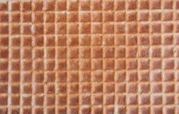 Textura da bolacha para um fundo foto de stock