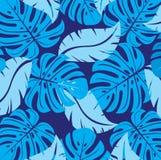 Textura da Botânica. Vetor. Imagens de Stock Royalty Free