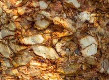 Textura da carne suculenta da galinha do no espeto Carne cozinhada imagens de stock royalty free