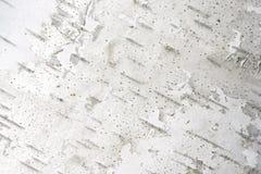 Textura da casca de árvore horizontal Foto de Stock Royalty Free