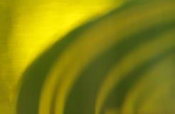 Textura da cerveja Imagens de Stock