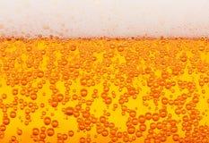 Textura da cerveja, sem emenda Imagens de Stock Royalty Free