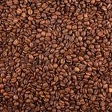 Textura da colheita do café Fotos de Stock