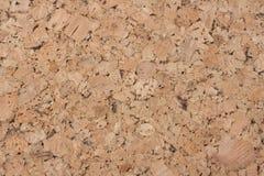 Textura da cortiça Imagem de Stock