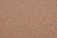 Textura da esponja de Brown Imagem de Stock