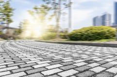 Textura da estrada Imagens de Stock