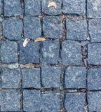 A textura da estrada pavimentada com o close up esquadrado das pedras imagem de stock royalty free