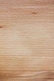 Textura da faia Foto de Stock
