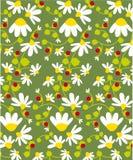 Textura da flor Imagens de Stock