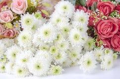Textura da flor Foto de Stock Royalty Free
