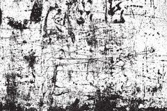 Textura da folha de prova da aflição Imagem de Stock