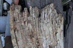 Textura da foto da prancha de madeira envelhecida velha fotos de stock royalty free