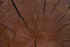 Textura da interrupção de madeira para o fundo fotos de stock