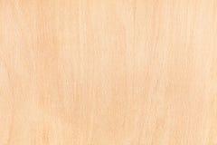 Textura da madeira de faia imagens de stock royalty free