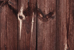 Textura da madeira de Grunge Imagem de Stock