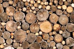 Textura da madeira do registro Imagens de Stock