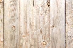 Textura da madeira do vintage Imagem de Stock
