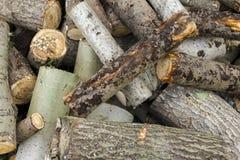 Textura da madeira para o combustível Foto de Stock