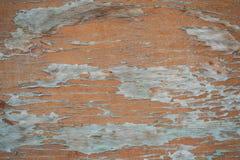 Textura da madeira velha Foto de Stock