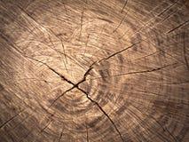 Textura da madeira velha do corte do marrom imagens de stock