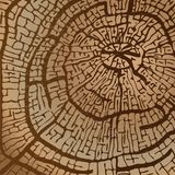 Textura da madeira vista na imagem marrom do vetor dos tons ilustração royalty free