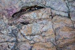Textura da montanha da rocha e da pedra Fotos de Stock Royalty Free