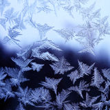Textura da natureza - gelo no vidro Imagem de Stock Royalty Free