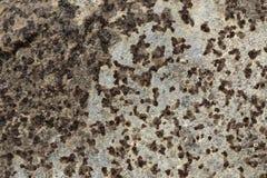 Textura da oxidação do ferro do Grunge, fundo de aço velho da corrosão imagens de stock