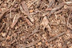 Textura da palha de canteiro da casca do jardim Foto de Stock