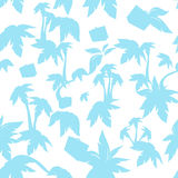 Textura da palma Imagens de Stock Royalty Free
