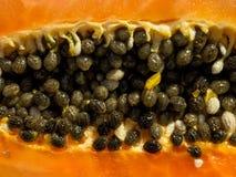 Textura da papaia imagem de stock