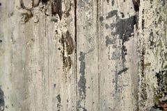 Textura da parede abandonada fotografia de stock royalty free