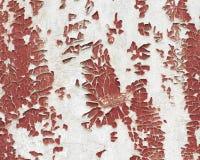 A textura da parede cobriu pintura rachada Fotografia de Stock