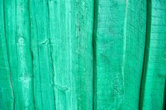 Textura da parede de madeira verde, da cerca de placas brilhantes verticais de tamanhos diferentes com quebras e dos nós Fotos de Stock Royalty Free