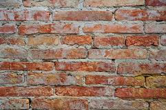 textura da parede de tijolo Imagem de Stock Royalty Free