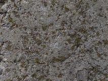 Textura da parede do cimento Fotografia de Stock Royalty Free
