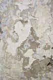 Textura da parede do cimento para seu projeto Imagem de Stock