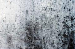 Textura da parede do pulverizador da cor do Grunge Fotografia de Stock