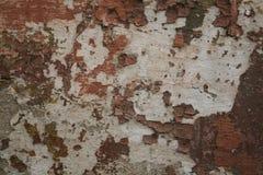 Textura da parede pintada gasto velha Fotos de Stock