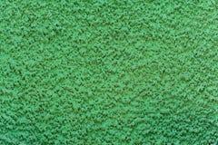 Textura da parede verde Fotos de Stock Royalty Free