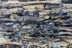 Textura da pedra calcária e do dolostone Imagens de Stock