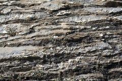 Textura da pedra lamelosa Fotografia de Stock Royalty Free