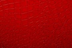 Textura da pele Fotografia de Stock Royalty Free