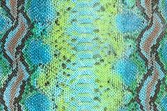 Textura da pele de serpente Fotografia de Stock Royalty Free