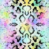 Textura da pele de serpente com rombo colorido Fundo geométrico Fundo amarelo azul roxo do verde sem emenda do arco-íris do preto Fotografia de Stock Royalty Free
